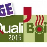 logo-Qualibois-2015-RGE – L300